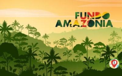 Fundo Amazônia: investimento na conservação das florestas