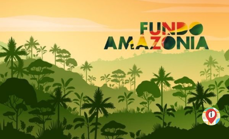 BLOG_Por que empresas e governos investem em conservação das florestas_ Conheça o Fundo Amazônia